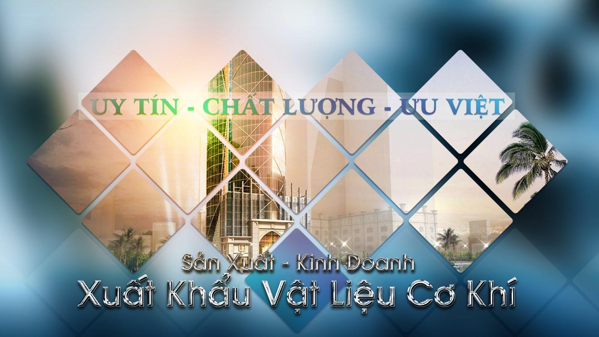 Công Ty Long Thịnh Việt